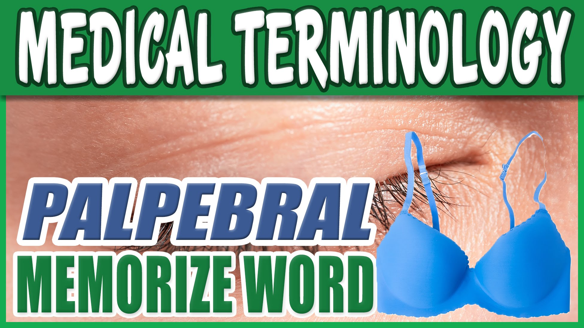 Medical Terminology Course - PALPEBRAL | Dictionary List