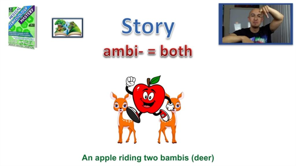 Ambi Medical Term Prefix Mnemonic Meaning Definition Terminology